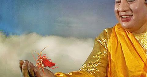 5 vấn đề Tôn Ngộ Không thỉnh giáo Phật Tổ và những triết lý cuộc sống rút ra