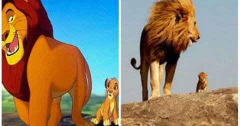"""Khi hình ảnh đời thực được đưa vào phim hoạt hình \""""The Lion King\"""""""