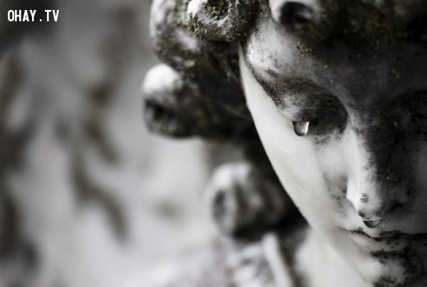 2015 là năm của nước mắt (Theo larrypatten.com)h