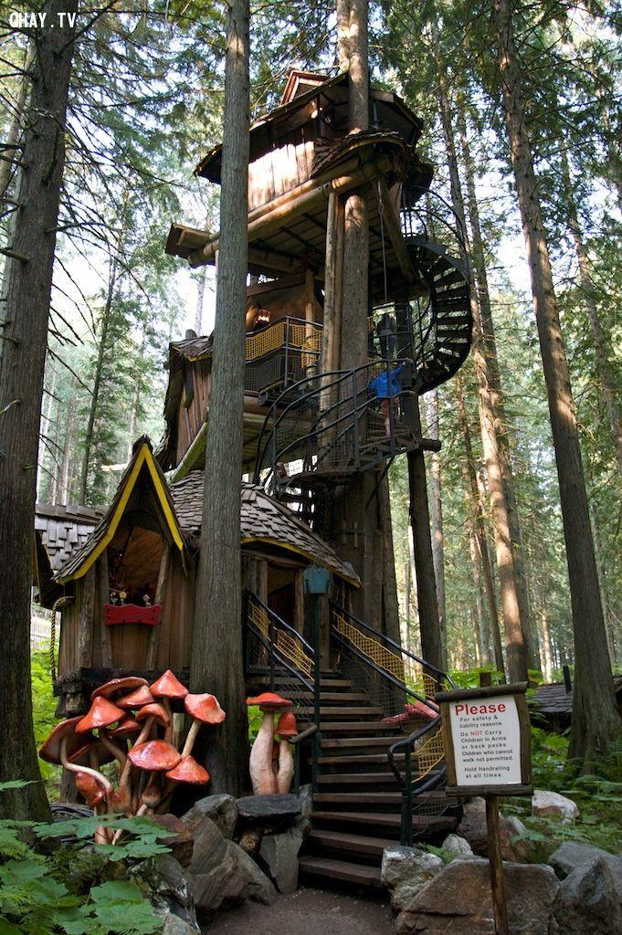 nhà cây 3 tầng tại Canada