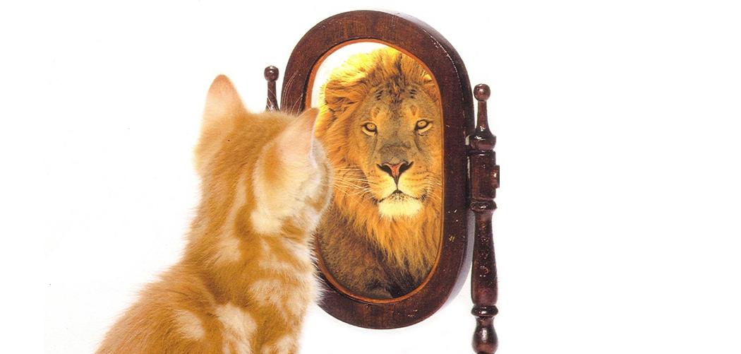 ảnh tự tin,kỹ năng giao tiếp