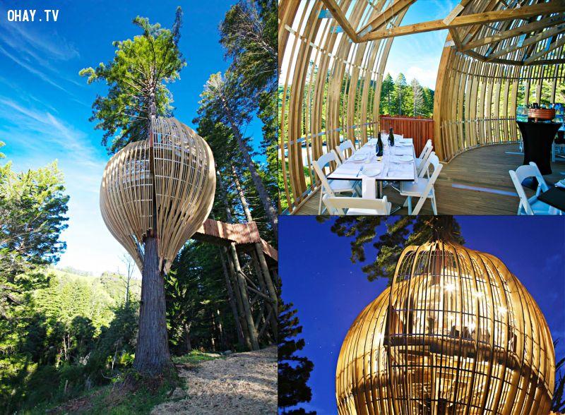 Nhà cây khách sạn Vàng tại New Zealand