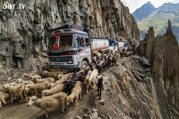 Đường đèo Zoji, Ấn Độ