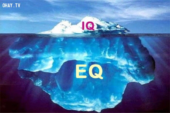 ảnh EQ tình yêu,chỉ số EQ