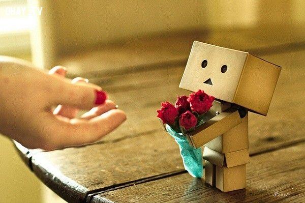ảnh tỏ tình,tình yêu