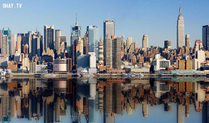 New York là nơi thường xuyên xảy ra các vụ tự tử