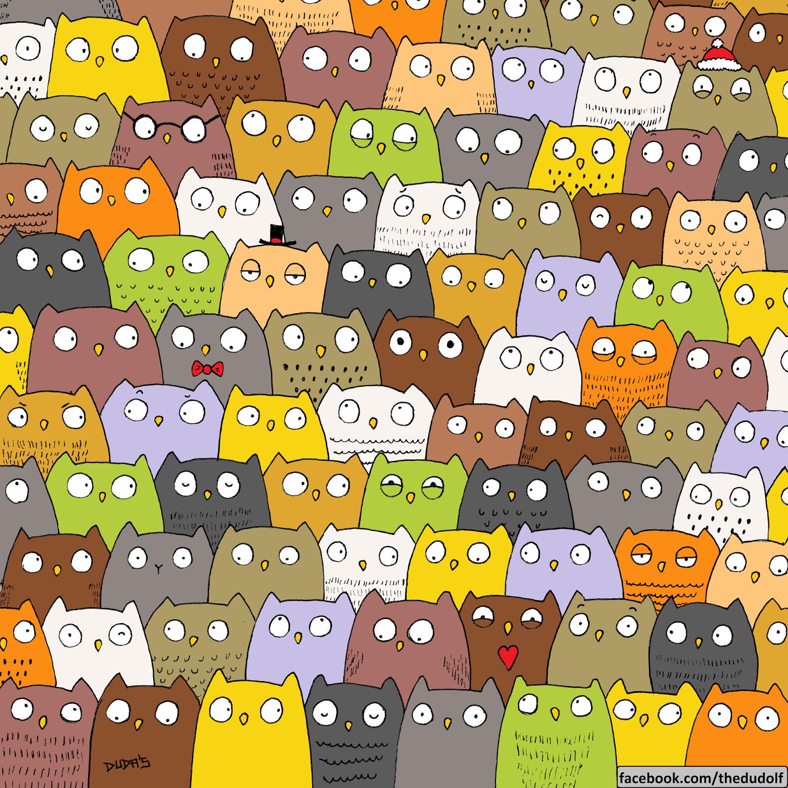 Tìm chú mèo trong bức ảnh này