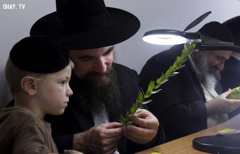 người Do Thái dạy con2