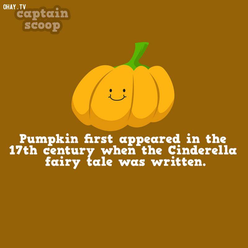 Bí ngô xuất hiện khi truyện Cinderella (Lọ lem) được sáng tác