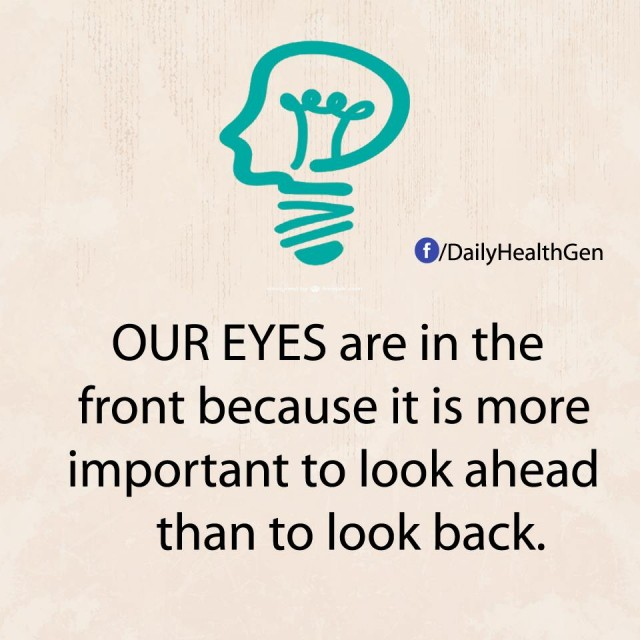 10. Hãy nhìn về tương lai: Mắt của chúng ta ở phía trước bởi vì nhìn phía trước quan trọng hơn là nhìn lại sau lưng.,nguyên tắc sống,sống tốt,sống tích cực,sống hạnh phúc