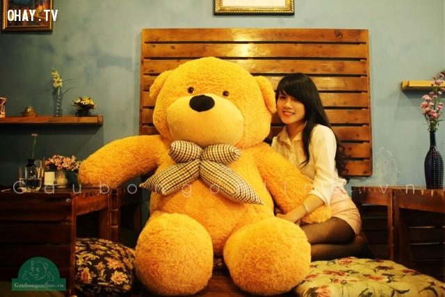 Gấu bông.,quà Valentine,Valentine,tặng quà valentine,valentine tặng quà gì,tình yêu