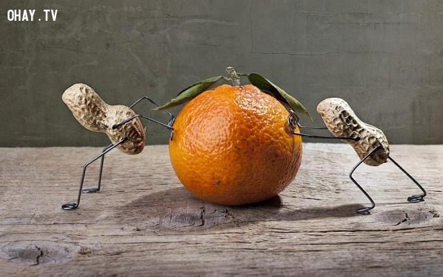 Đậu phộng và cam,đậu phộng,củ lạc,sáng tạo,Nailia Schwarz