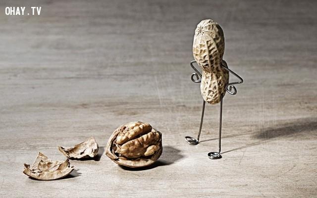 Người đàn ông đậu phộng và quả óc chó ,đậu phộng,củ lạc,sáng tạo,Nailia Schwarz