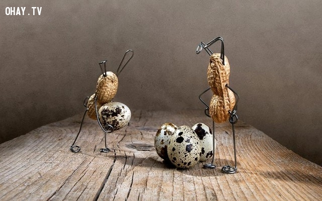 Đậu phộng và trứng cút,đậu phộng,củ lạc,sáng tạo,Nailia Schwarz