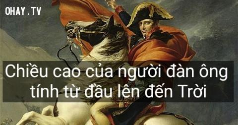 Napoleon và 25 câu nói chưa bao giờ hết giá trị