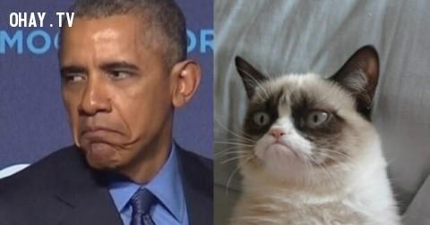 Lý do vì sao Obama là Tổng Thống tệ hại nhất trong lịch sử nước Mỹ