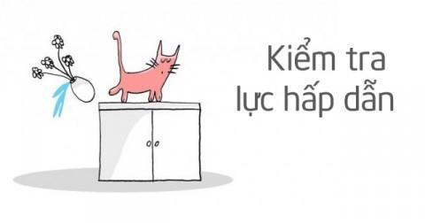 17 'nhiệm vụ' của loài mèo