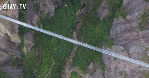 Rợn người cầu treo bắc qua vách núi làm bằng kính ở Trung Quốc