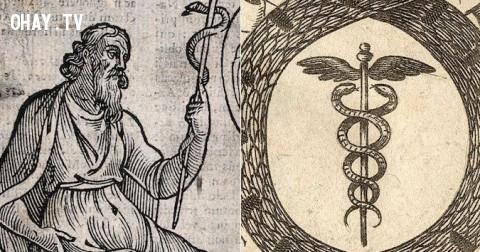 Vì sao con rắn là biểu tượng của ngành Y?