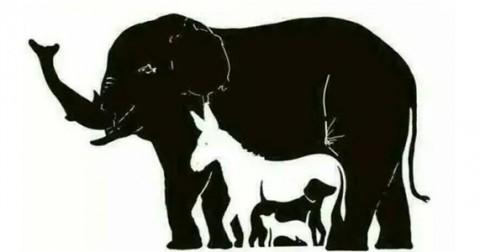 Số lượng con vật bạn nhìn thấy cho biết về IQ của bạn