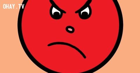 Thêm lý do để bạn không nên nóng giận
