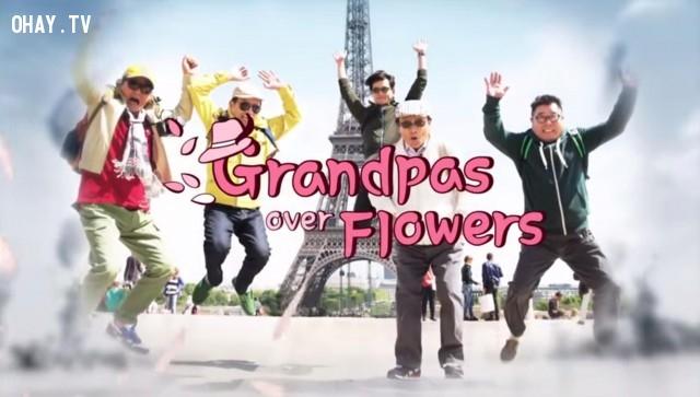 Grandpas over flower,Truyền hình thực tế,Hàn Quốc,Du lịch