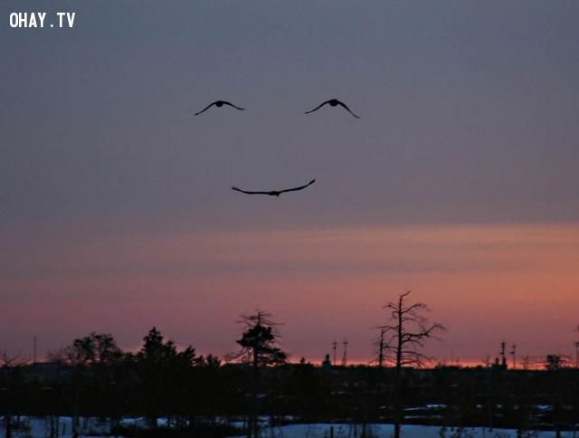 Nụ cười.,