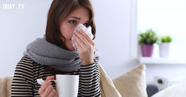 Nó có thể tăng cường chức năng hệ miễn dịch.,lợi ích của uống rượu,rượu bia