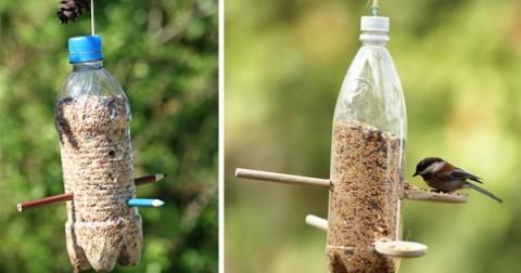 17 ý tưởng thiết kế độc đáo từ chai nhựa khiến bạn bất ngờ