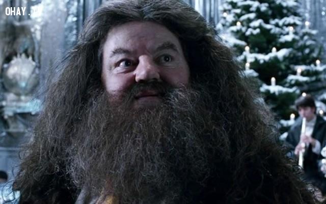 6.  Râu của bác Hagrid đã được thực hiện từ sáu phần tóc khác nhau. Và có nhiều thứ đã bị mắc kẹt trong đó theo thời gian, bao gồm cả những chú dơi.,sự thật thú vị,Harry Potter,phim