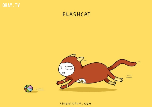 FlashCat!,