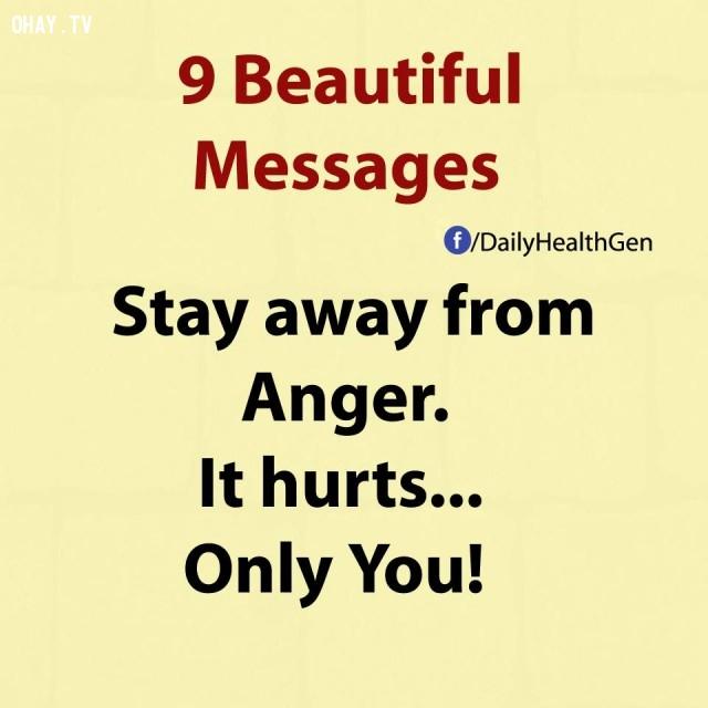 1. Hãy tránh xa sự tức giận. Nó chỉ làm đau chính bạn mà thôi!,thông điệp cuộc sống,bài học cuộc sống,nguyên tắc sống,sống tốt,sống hạnh phúc