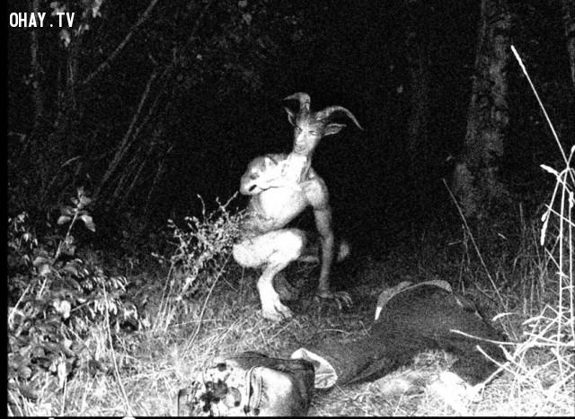 Người dê.,sinh vật kỳ lạ,chưa thể giải thích,quái vật