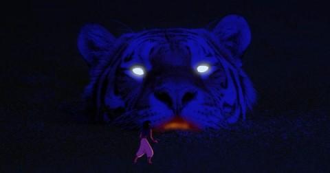 Chỉ từ một tấm ảnh đầu hổ, hàng chục tác phẩm nghệ thuật đã được dân mạng photoshop