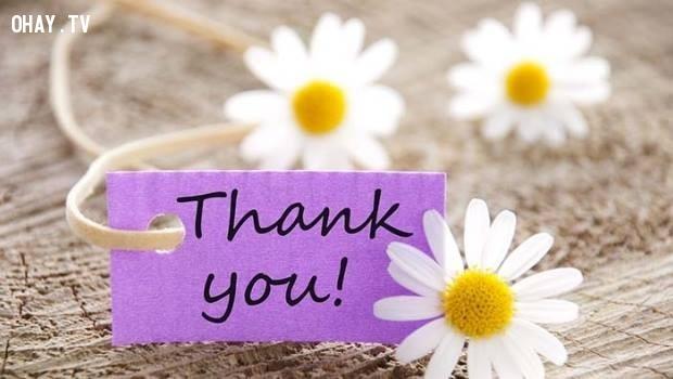 Bạn quên nói lời cảm ơn .,