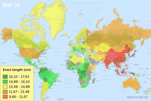 """Một bản đồ hiển thị kích thước trung bình """"cậu nhỏ"""" của đàn ông trên thế giới,bản đồ thú vị,bản đồ kì lạ,tổng hợp,bản đồ thế giới"""