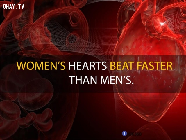 9. Tim phụ nữ đập nhanh hơn đàn ông.,sự thật đáng kinh ngạc,sự thật thú vị,những điều thú vị trong cuộc sống,phụ nữ,có thể bạn chưa biết