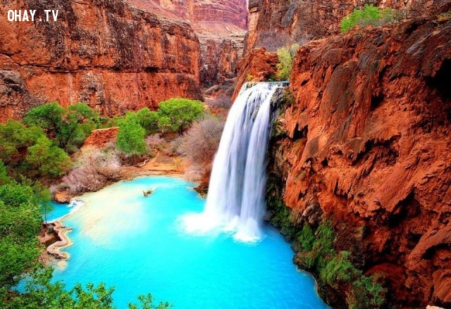 8. Havasu Falls, Grand Canyon, Hoa Kỳ,địa danh,điểm đến du lịch