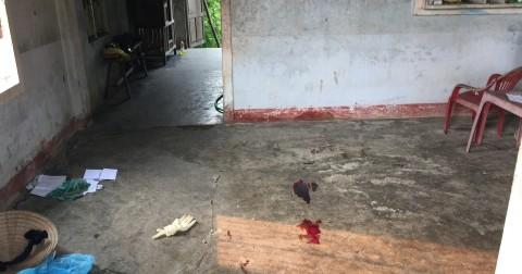 Nghịch tử đánh chết mẹ rồi cắt tay tự tử nhưng bất thành