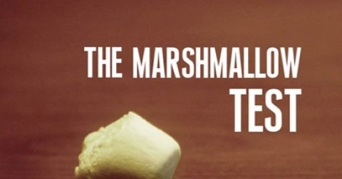 Bài test Marshmallow và ý nghĩa sâu xa dẫn đến thành công