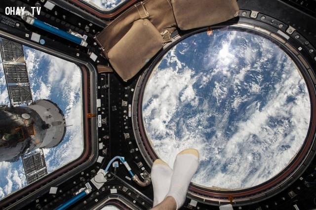 Đôi chân chạm vào thế giới,