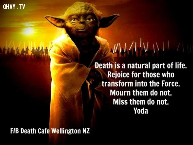 10. Cái chết là điều hiển nhiên của cuộc sống. Hãy vui mừng cho những người đã trở thành huyền thoại. Đừng khóc than vì họ. Cũng đừng quá nhớ thương họ.,star wars,châm ngôn sống,câu nói hay trong phim,master yoda,câu nói hay