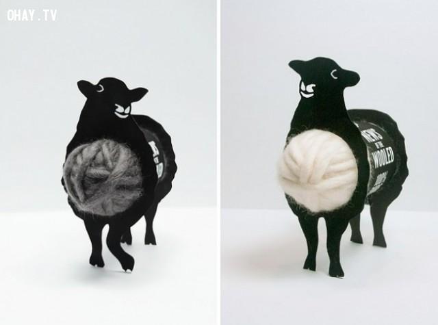Những cuộn len được chứa trong bụng chú cừu,sản phẩm sáng tạo,đóng gói sản phẩm,những điều thú vị trong cuộc sống,cách đóng gói sản phẩm