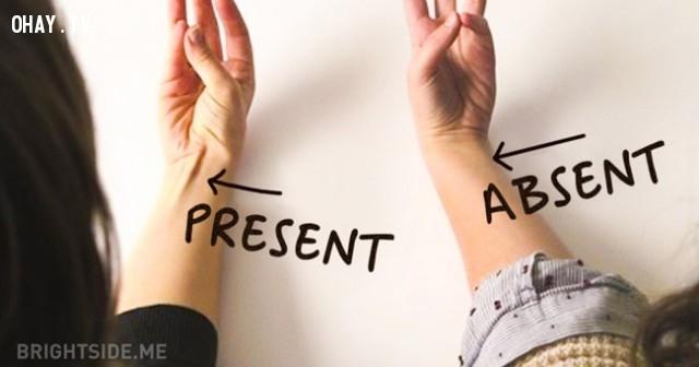 1. Cơ gan bàn tay dài,bằng chứng tiến hóa,sự tiến hóa của loài người,phép lạ của tiến hóa,tổ tiên con người