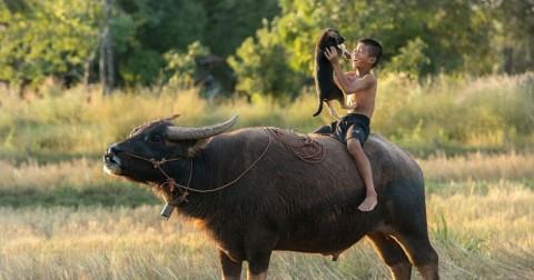 30 hình ảnh về tuổi thơ dữ dội tuyệt đẹp từ khắp nơi trên thế giới