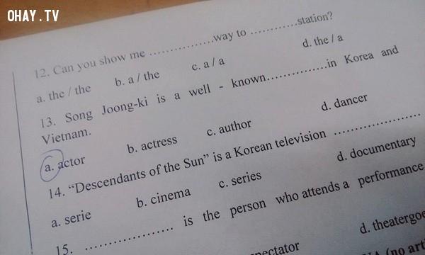 ,hậu duệ mặt trời,hậu duệ của mặt trời,đề thi hậu duệ mặt trời