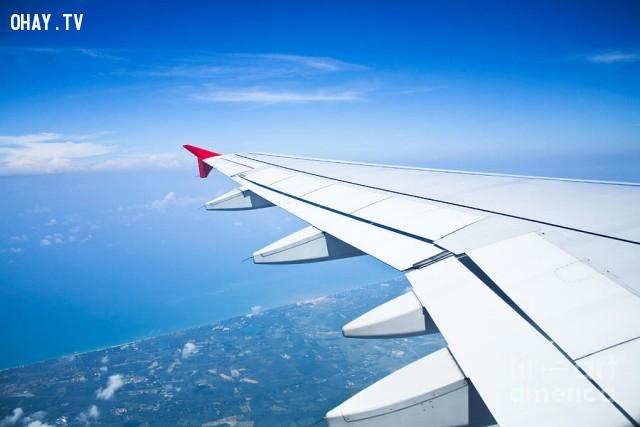 4. Chọn ghế ngồi gần cánh máy bay,du lịch,đi máy bay,mẹo vặt cuộc sống