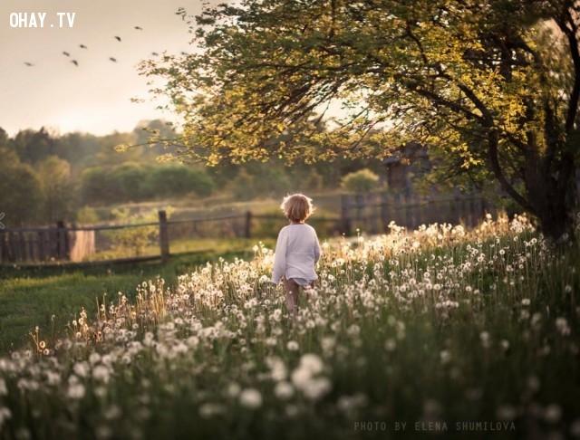 ,ảnh miền quê,ảnh tuổi thơ,quay về tuổi thơ,ảnh thời thơ ấu,những ngày thơ ấu,Elena Shumilova