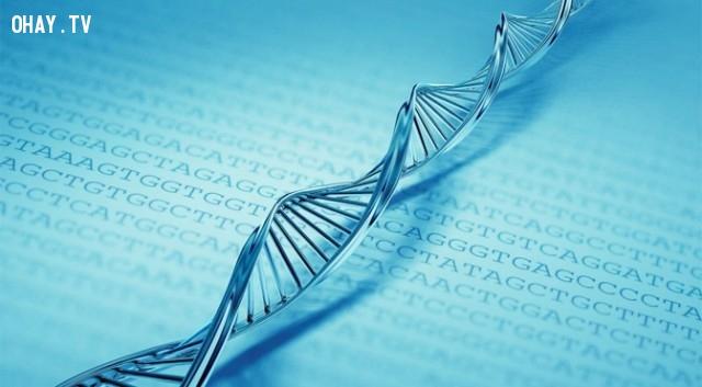2. 1 gram DNA của bạn có thể chứa toàn bộ dữ liệu của facebook và google ,những điều thú vị về facebook,những điều thú vị trong cuộc sống