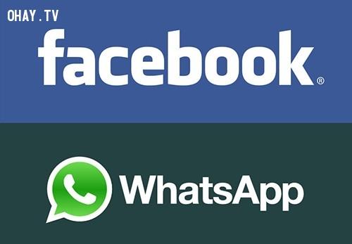 3. Trong năm 2009, người đồng sáng lập WhatsApp, Brian Acton đã từ chối một công việc tại Facebook . Năm năm sau, Facebook mua WhatsApp với 19 tỷ $ Mỹ,những điều thú vị về facebook,những điều thú vị trong cuộc sống